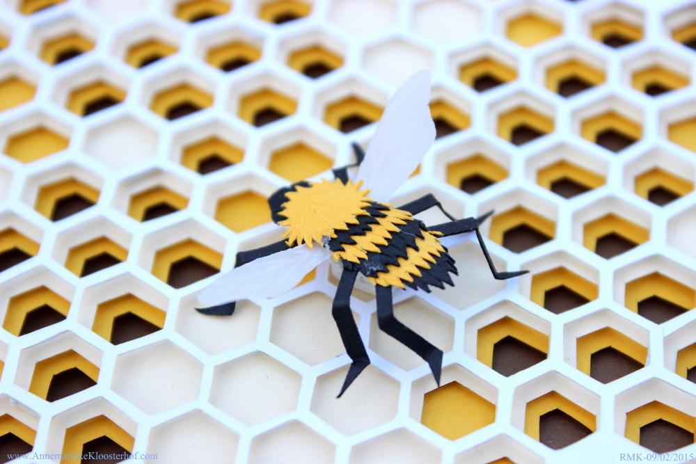 Beehive Bee closeup Annemarieke Kloosterhof