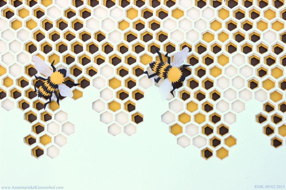 Beehive topdrip Annemarieke Kloosterhof