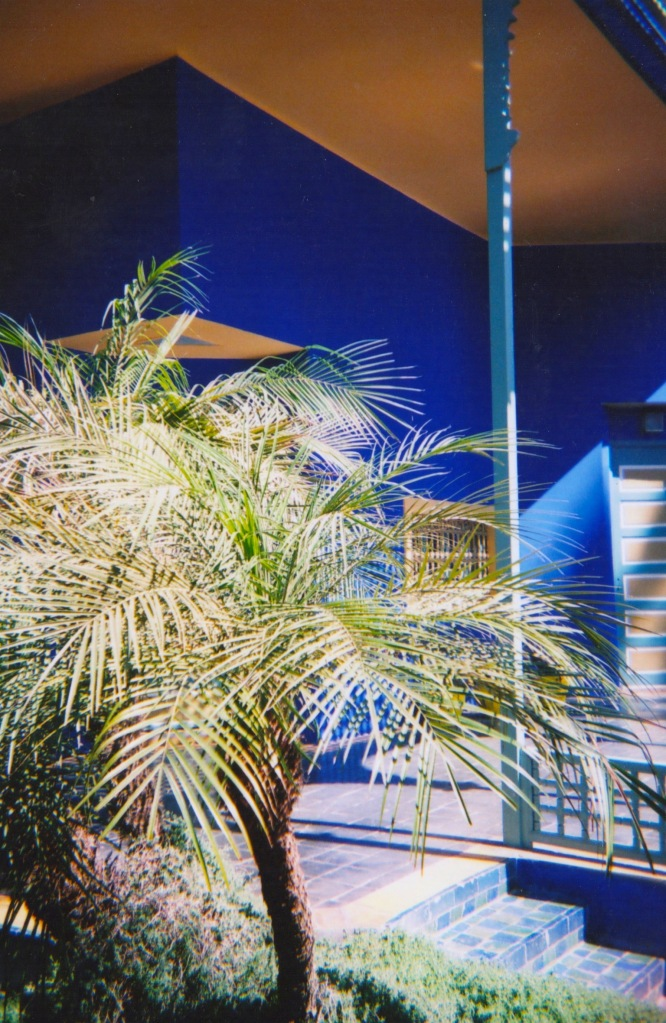 marrakechdisposable 2-001