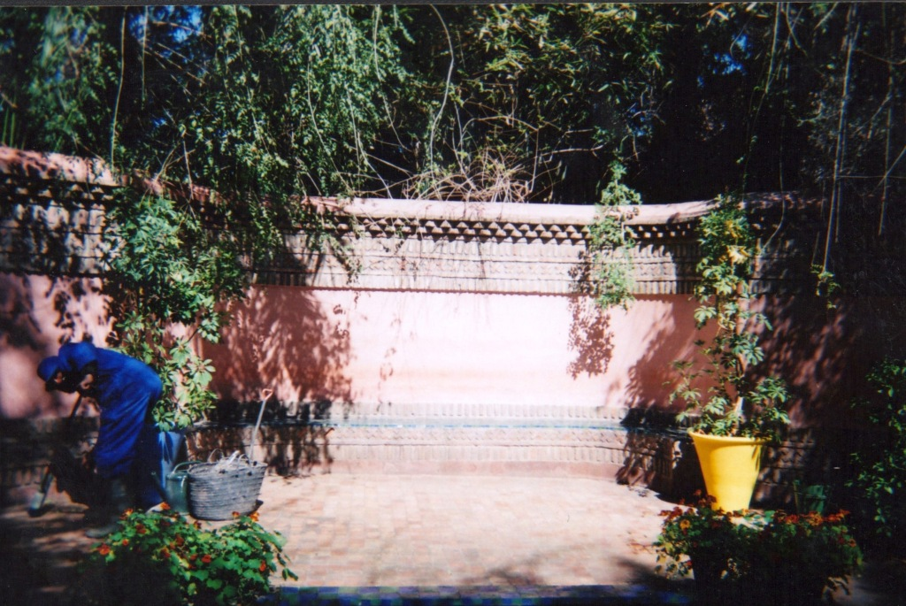 marrakechdisposable 4