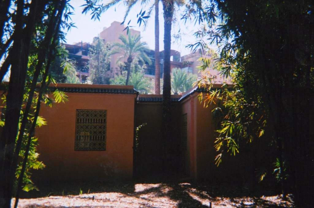 marrakechdisposable 5-001