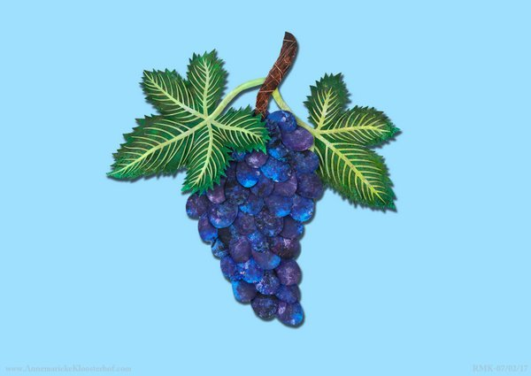 purple-grapes-blue